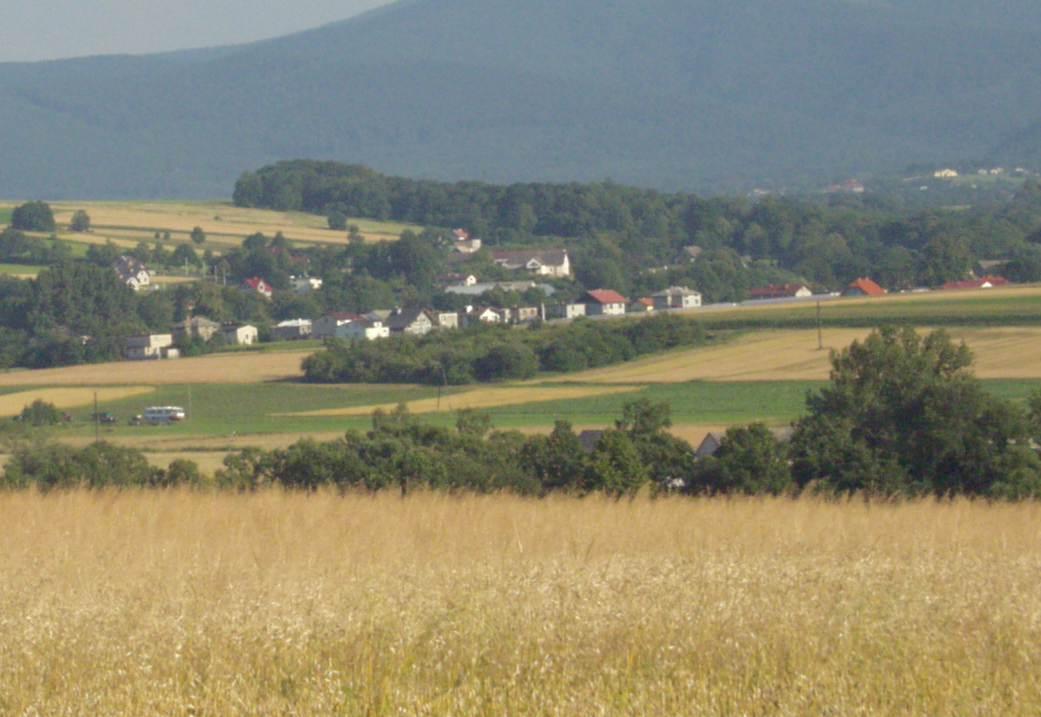 http://www.mroczko.com.pl/zdjecia/Mcze/LeM5.jpg